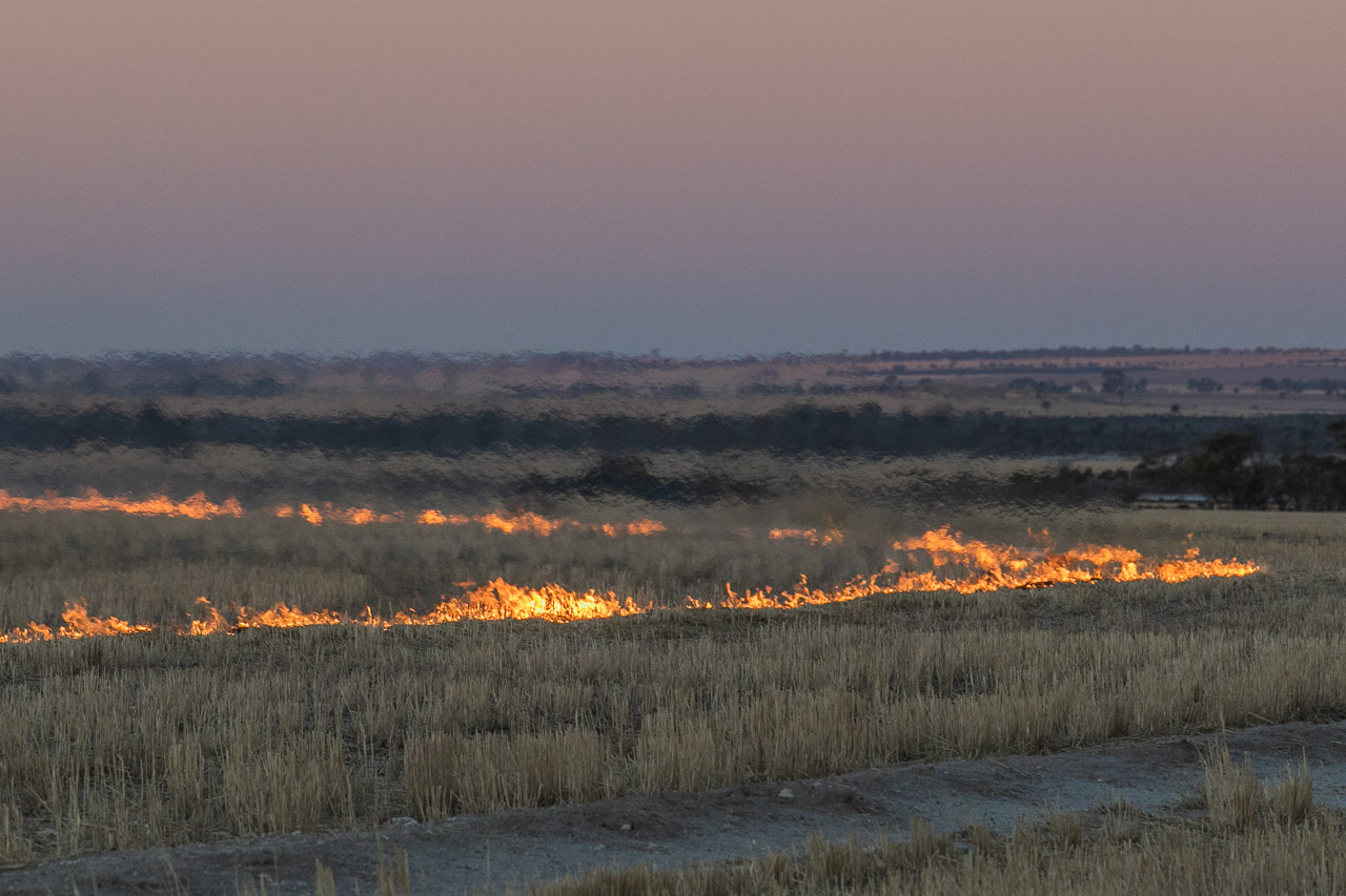 The heat haze, smoke and fire during windrow burning in Autumn in the Wheatbelt, before seeding begins