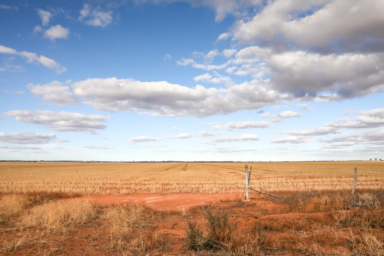 The Wheatbelt Way - flat horizons, big skies and minimalist landscapes