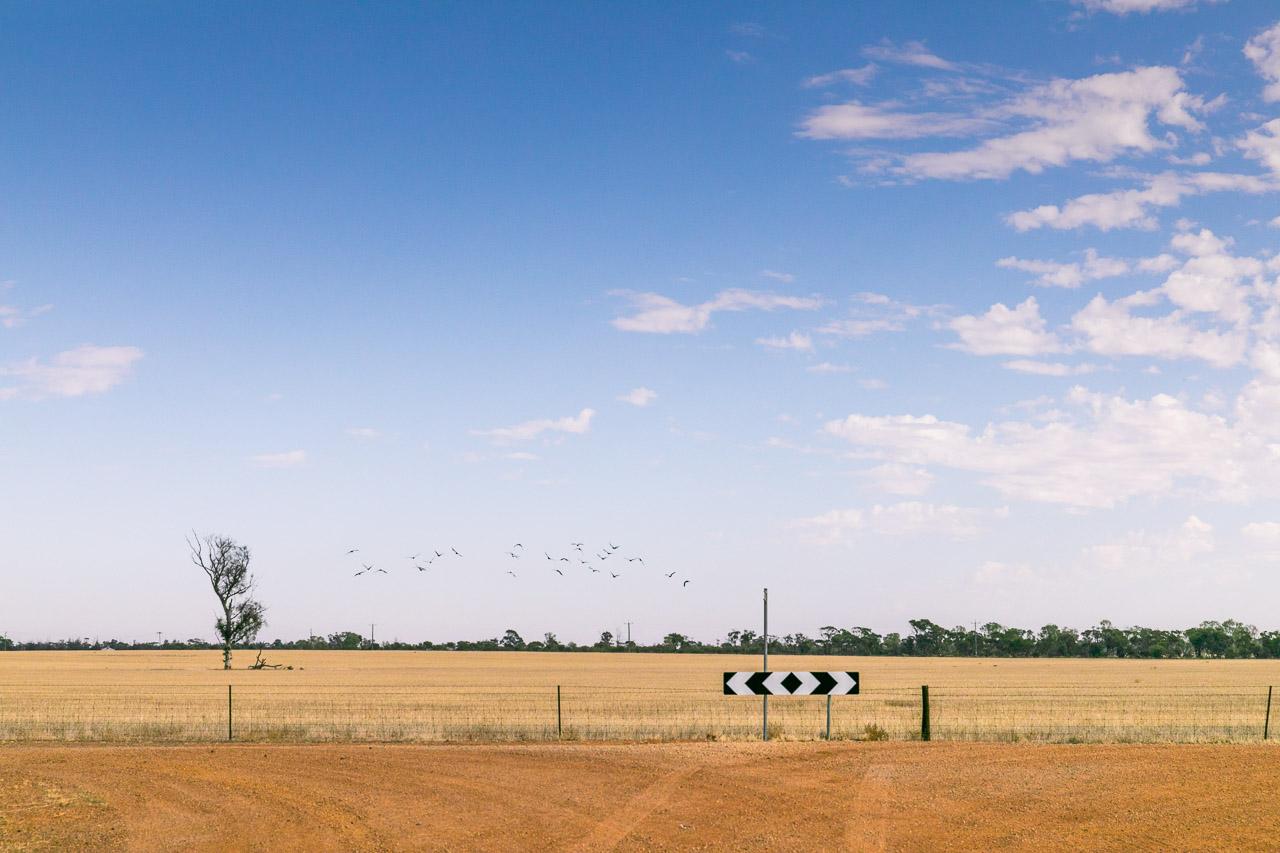 Simple, clean landscapes in the Wheatbelt region of Western Australia