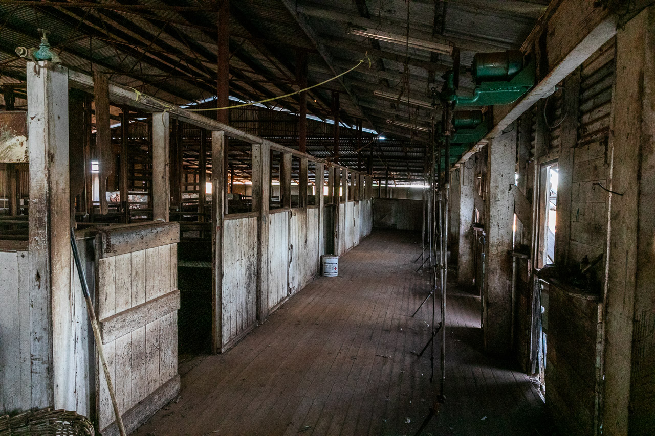 In the woolshed at Yuin Station in the Murchison, WA