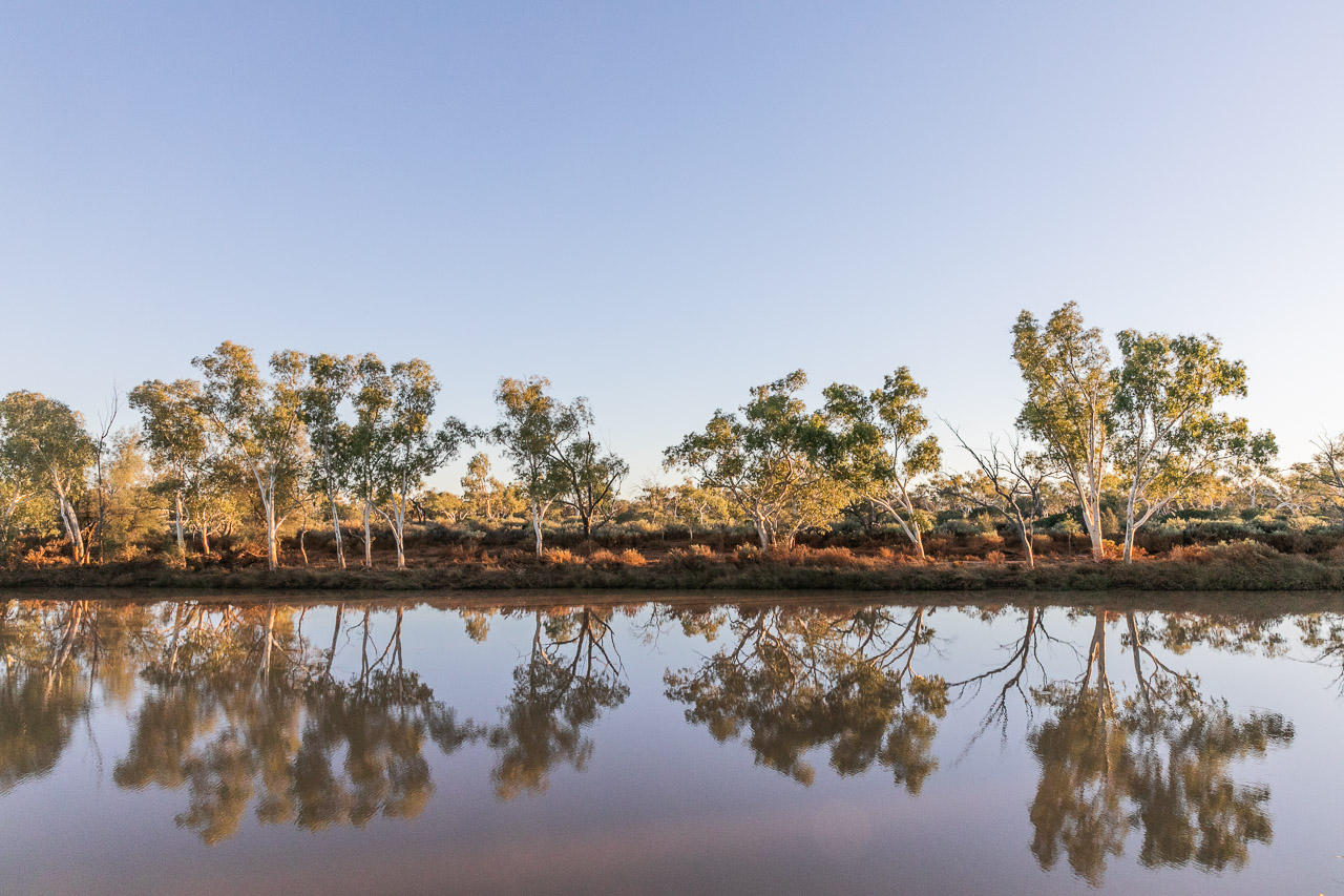 Reflections of river gums in the Murchison River