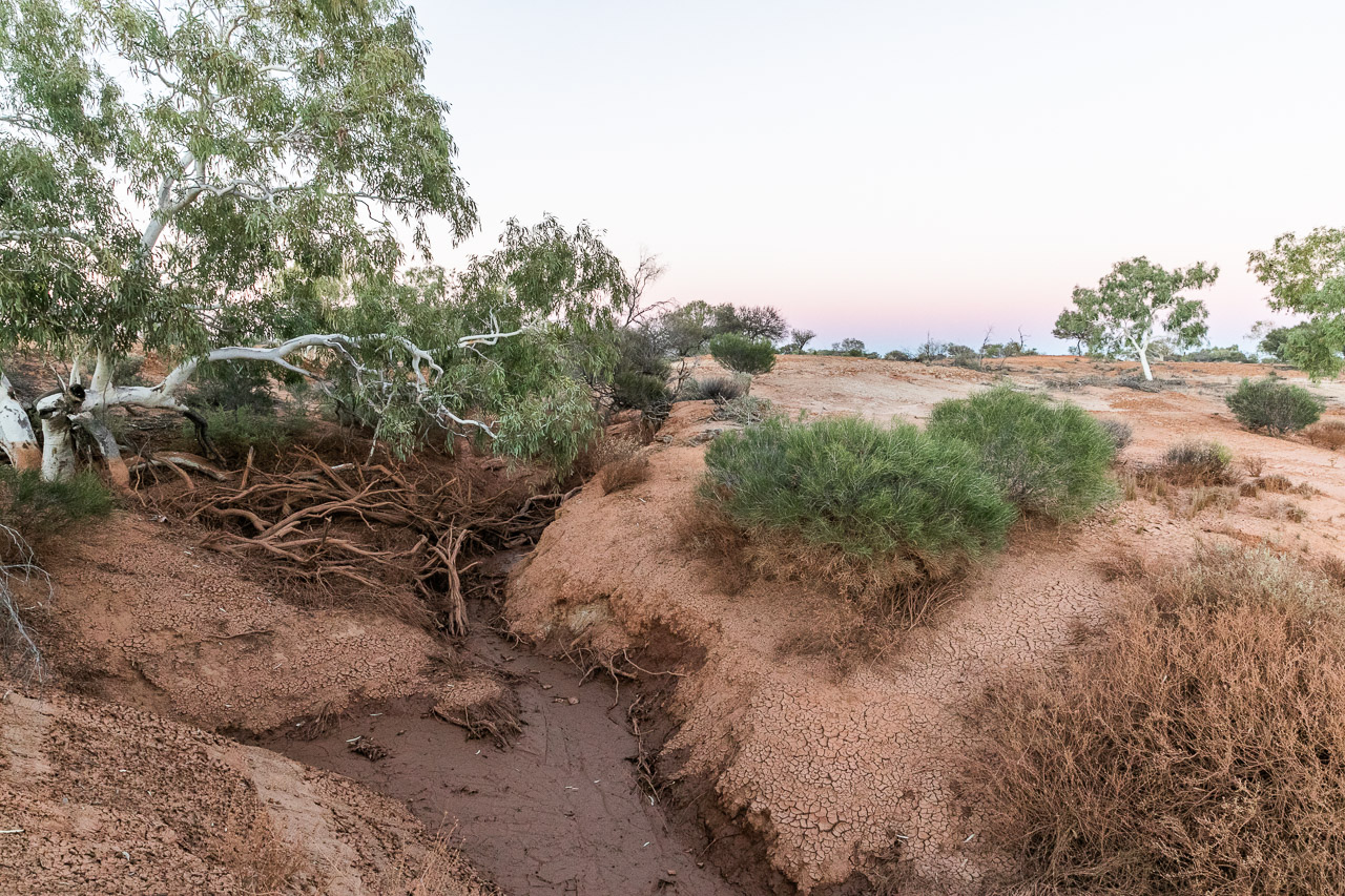 The gully and mud from the run off after recent rains at Wooleen Station in the Murchison region of Western Australia