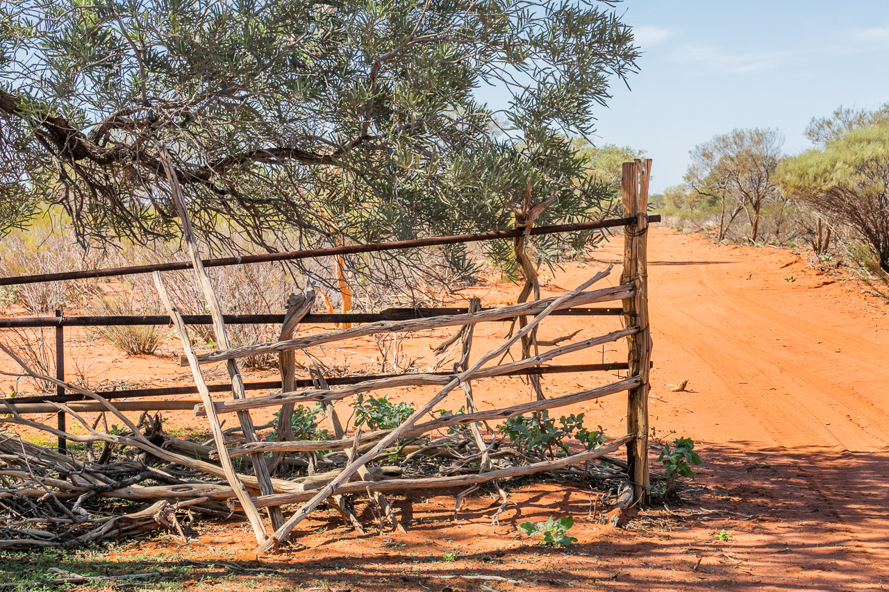 Old fences and gates at Carey Downs station have stood the test of time and the elements
