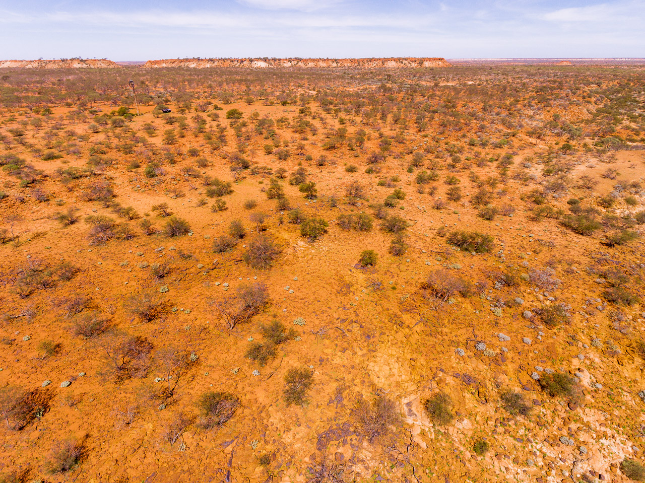 Drone image across the plains at Carey Downs Station, WA
