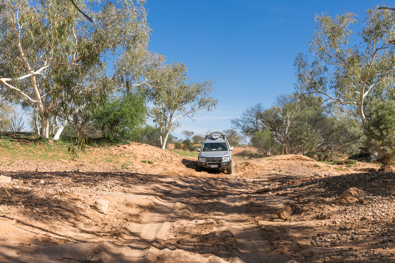 4-wheel driving at Carey Downs Station Stay in WA