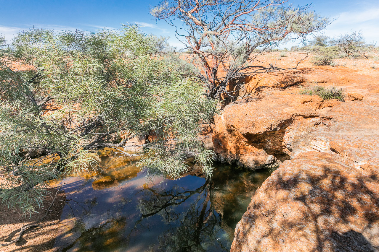 A waterhole at Carey Downs Station