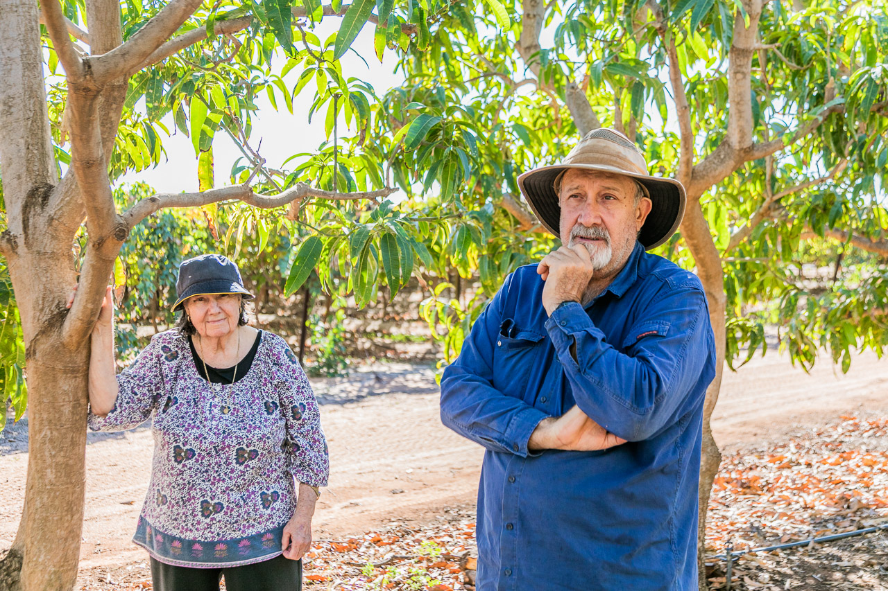 Zarka Skender and son Rick amongst their mango trees in Carnarvon