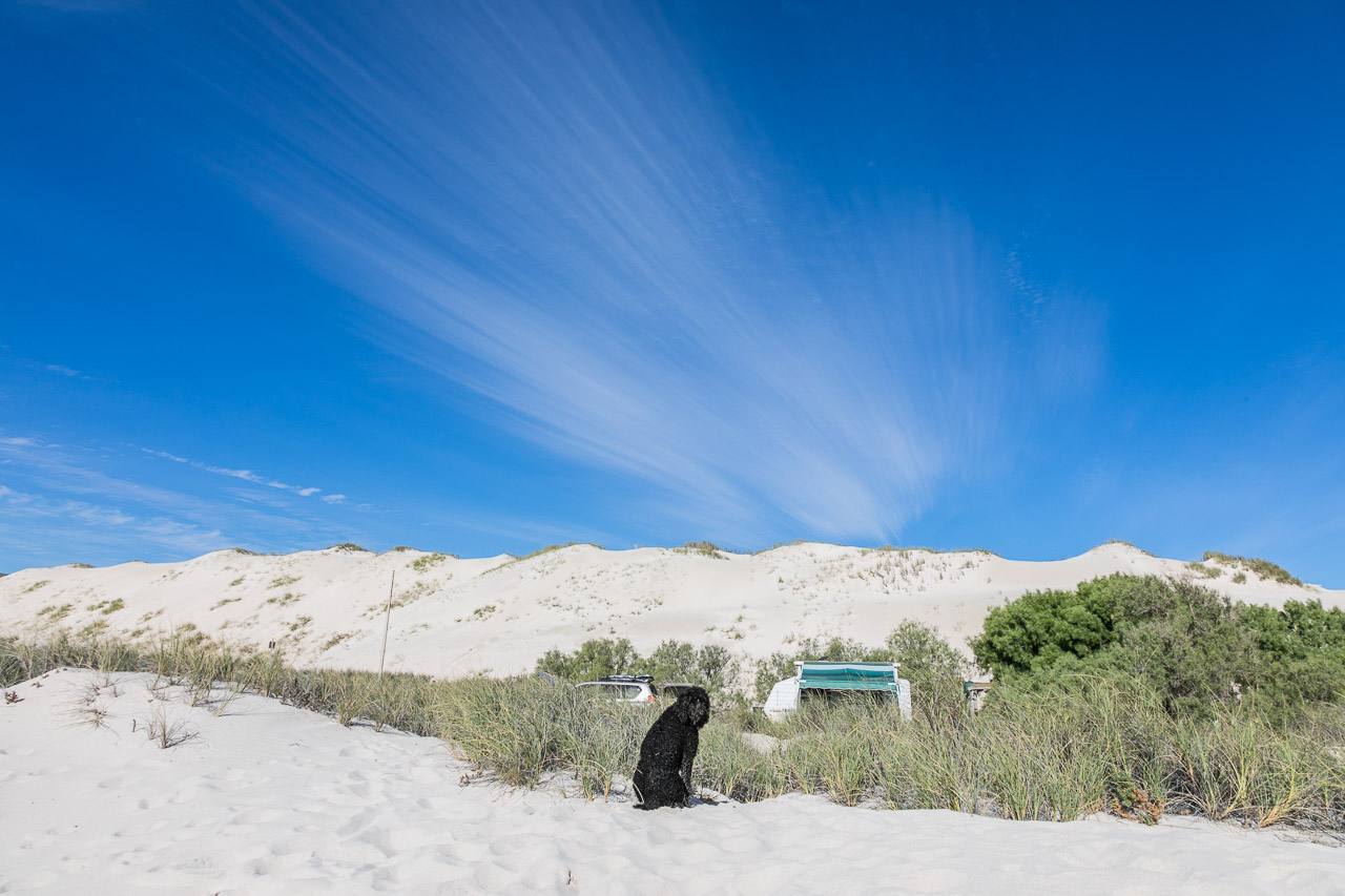 Wilderness camp in the sand dunes