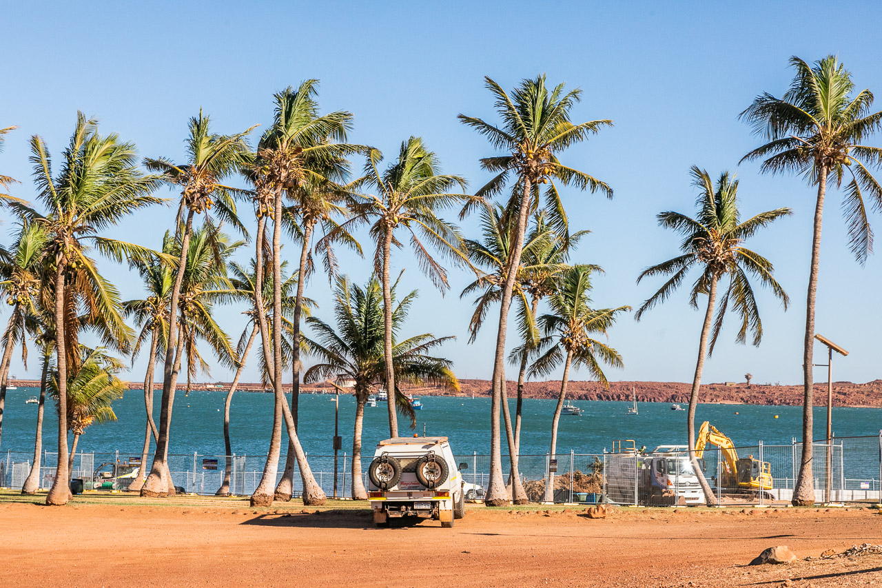 Palm trees and water in Dampier, WA