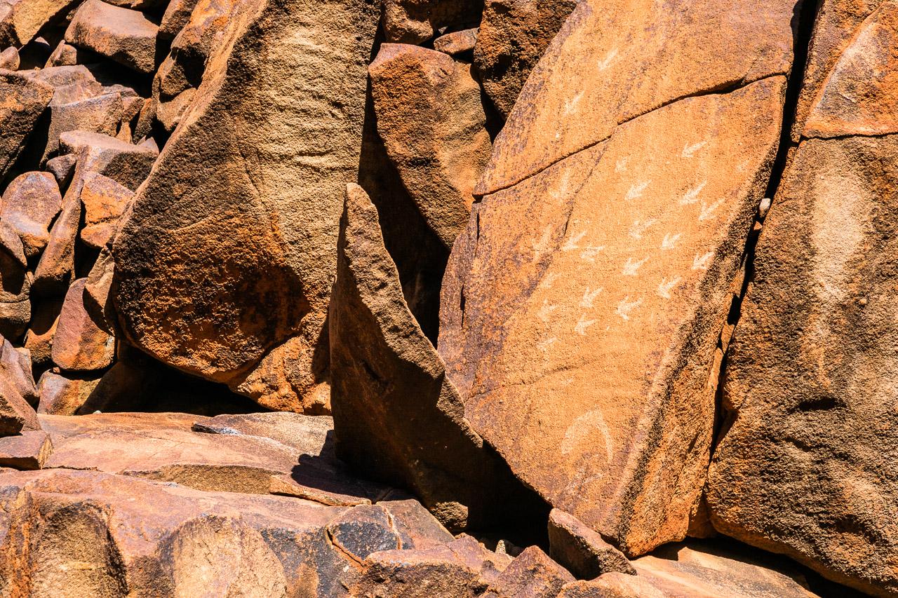 Aboriginal carvings at Deep Gorge