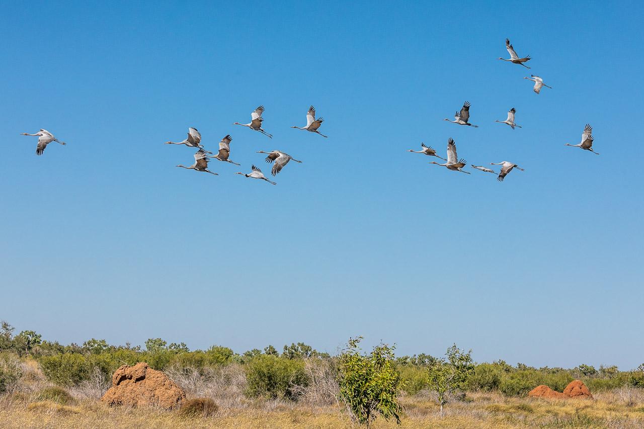 Port-Smith-Pilbara-coast-14.jpg