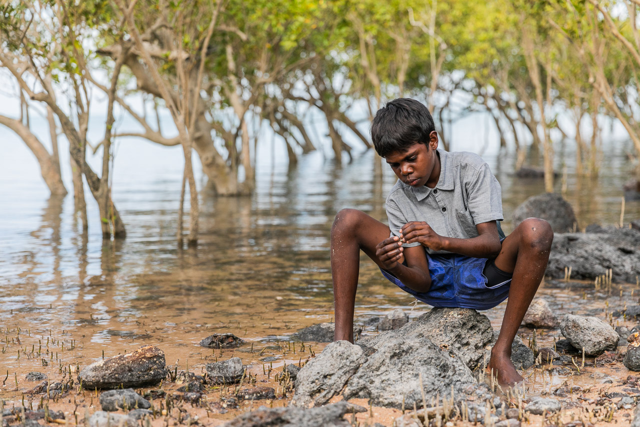 Broome Indigenous boy extracting a hermit crab from its shell in the mangroves
