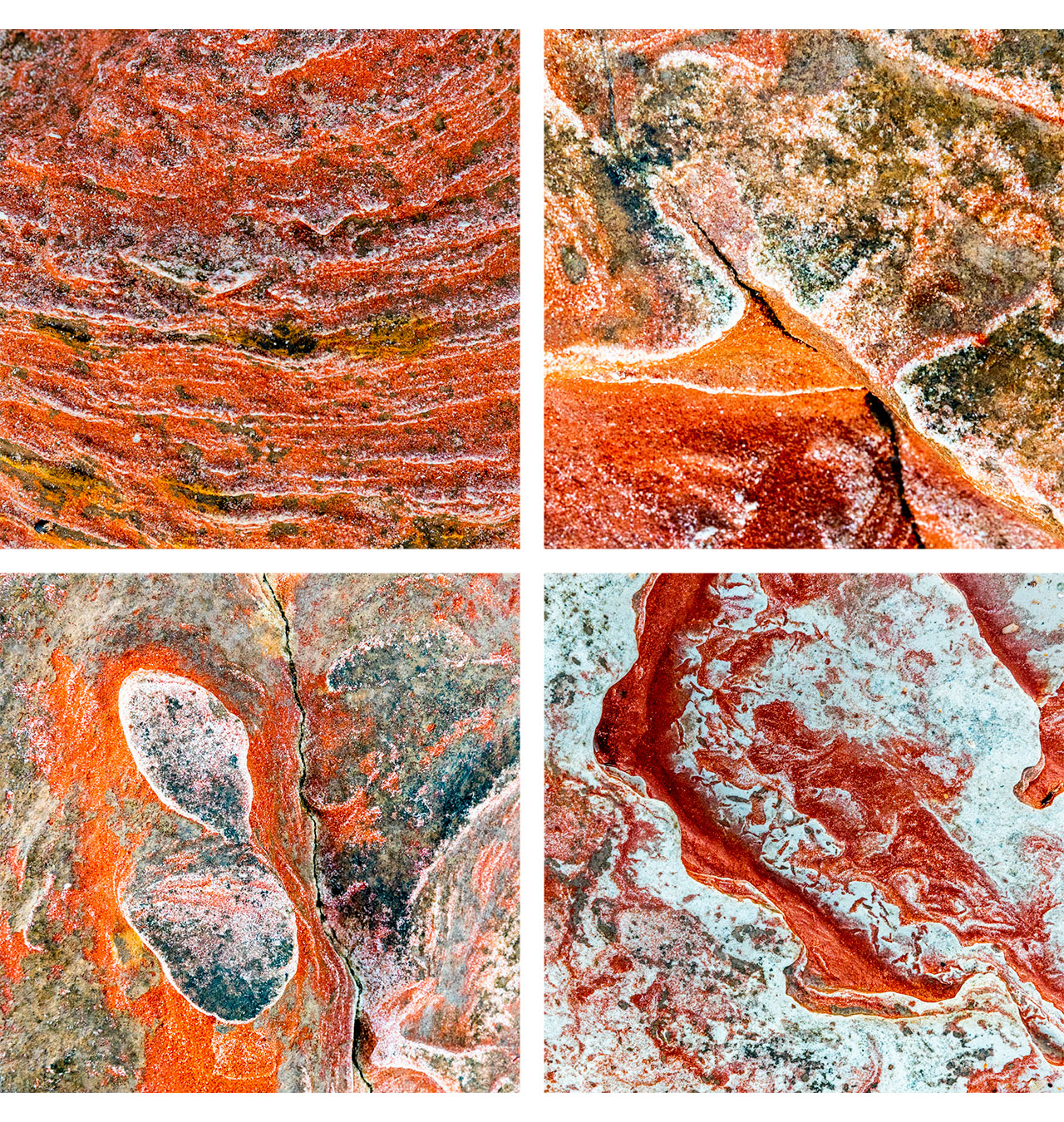 Montage of patterns in rock at Broome's Town Beach