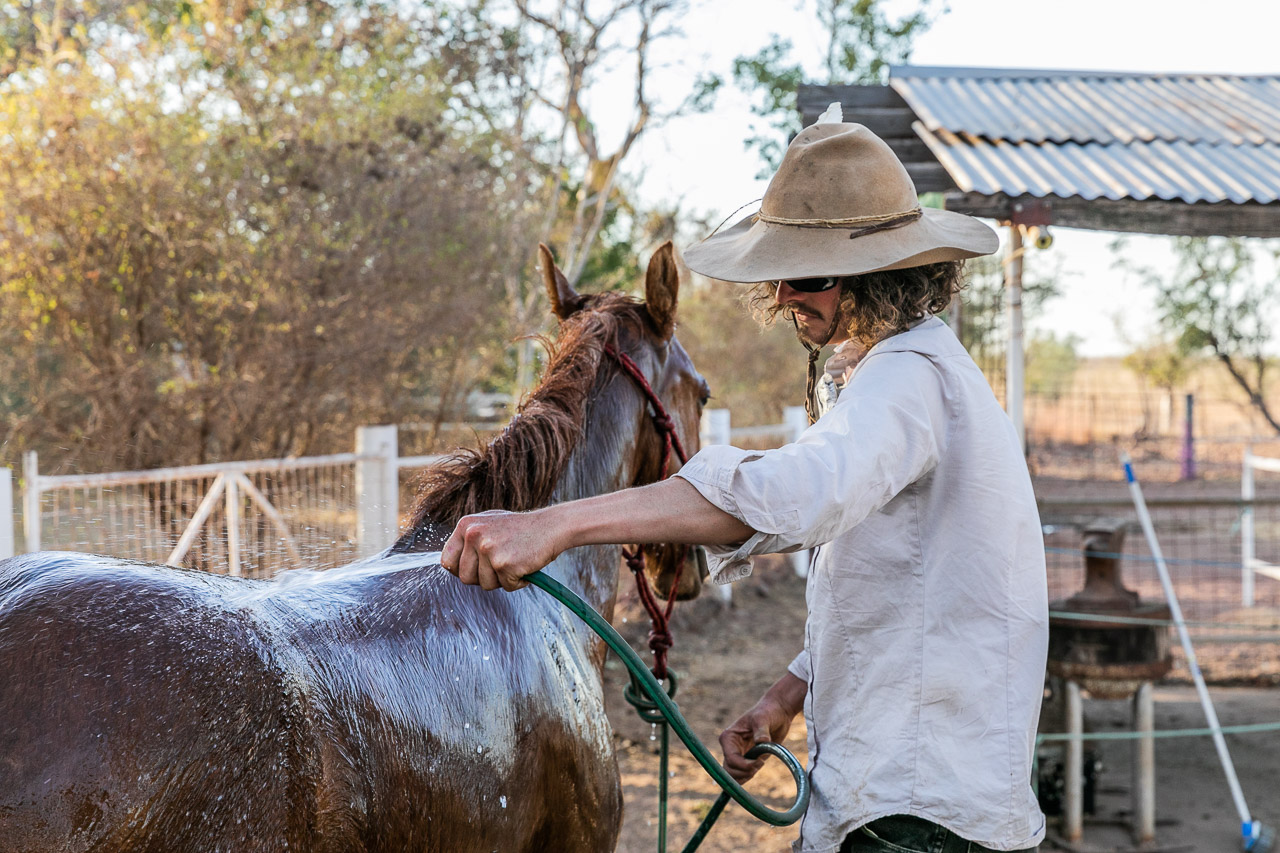 Washing the dust off the horses at Diggers Rest Station in WA's Kimberley
