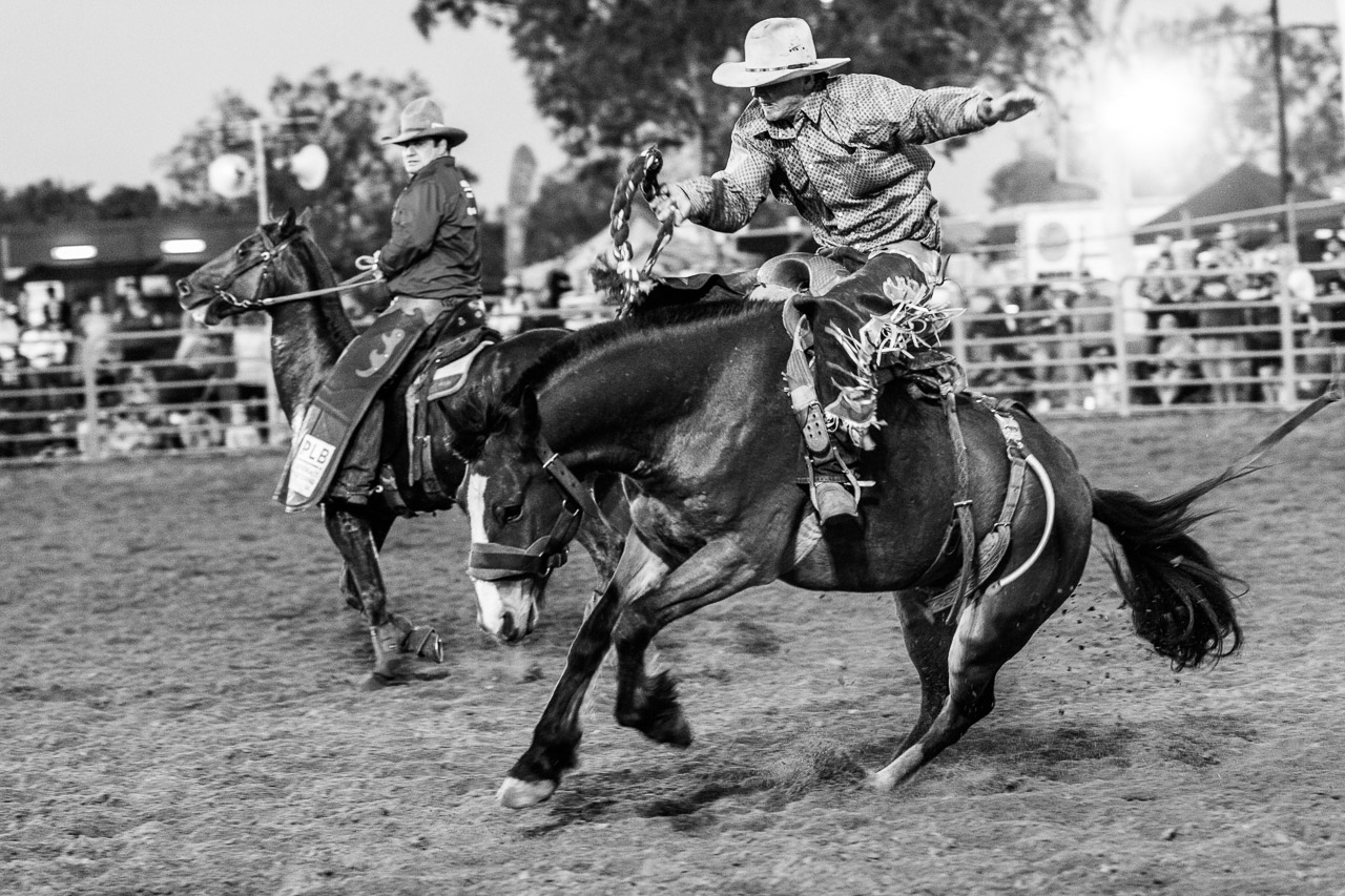 Cowboy riding a bucking horse at the Broome Rodeo