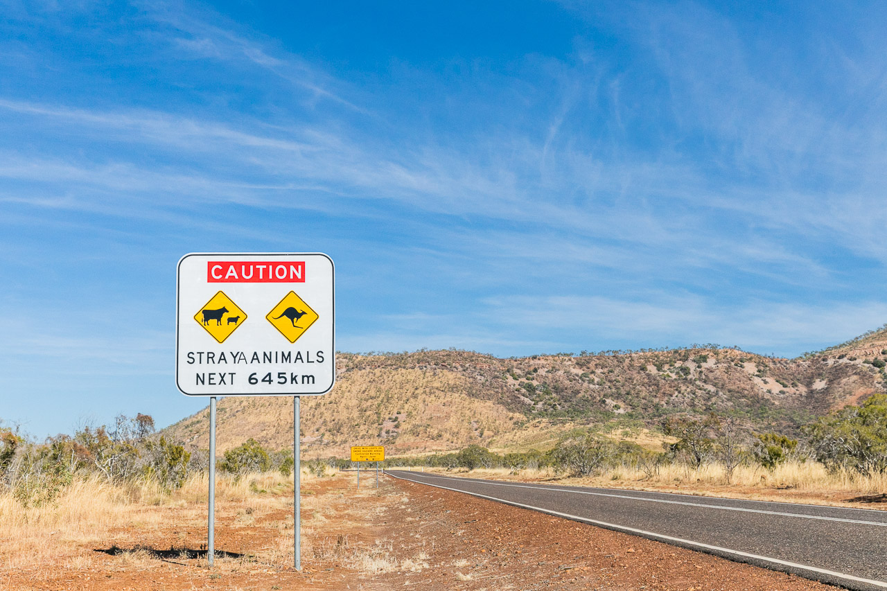 Stray animals sign on the Gibb River Road