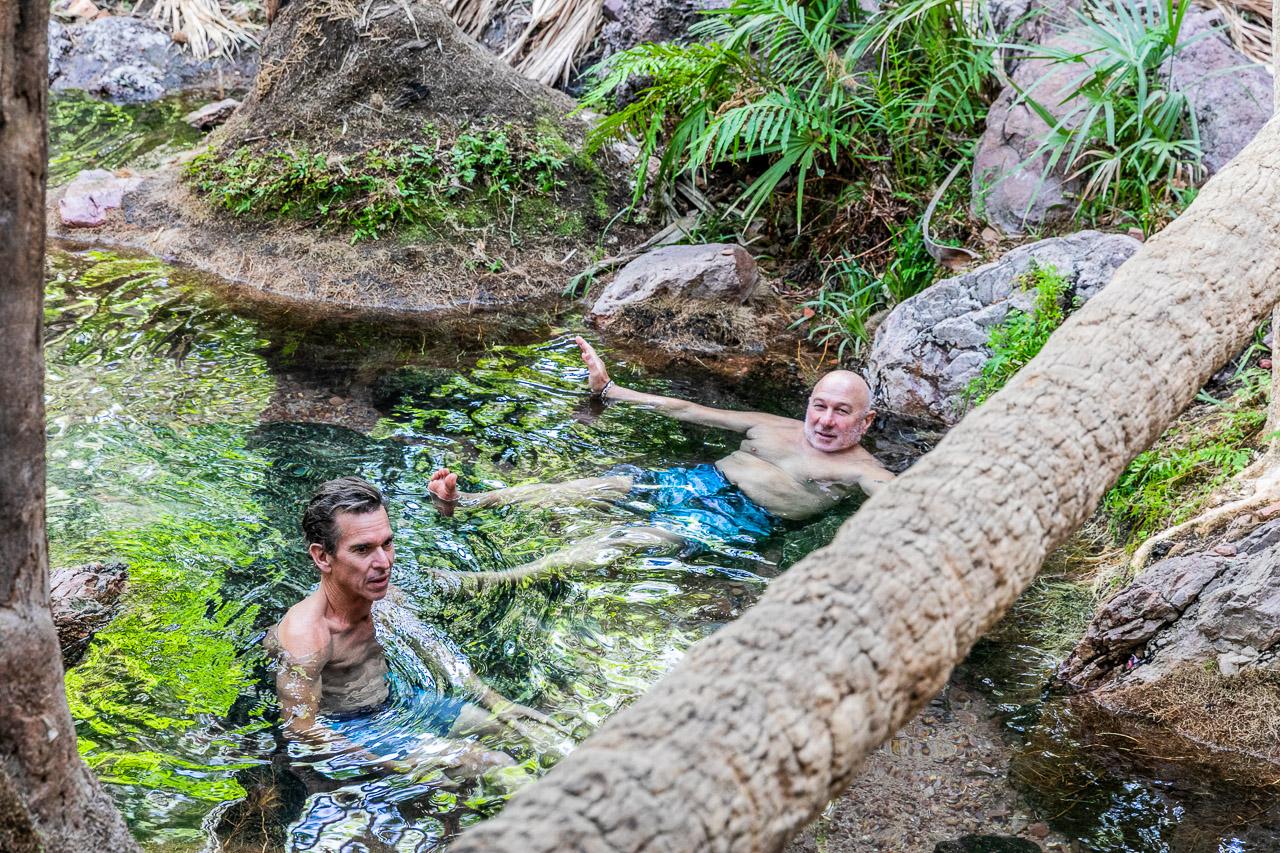 Thermal fresh water pools at Zebedee Springs on El Questro Station
