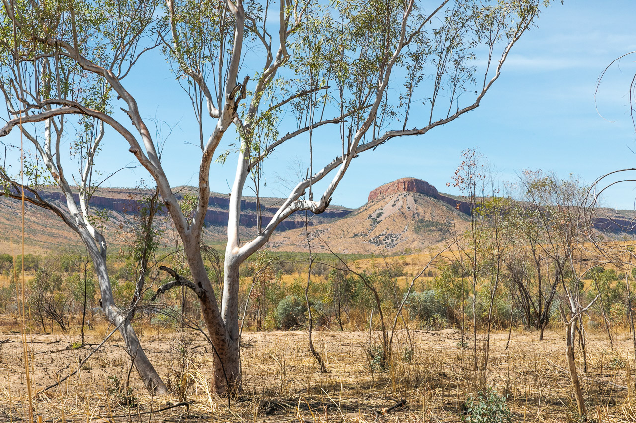 View to the ranges on the Gibb River Road near Home Valley Station