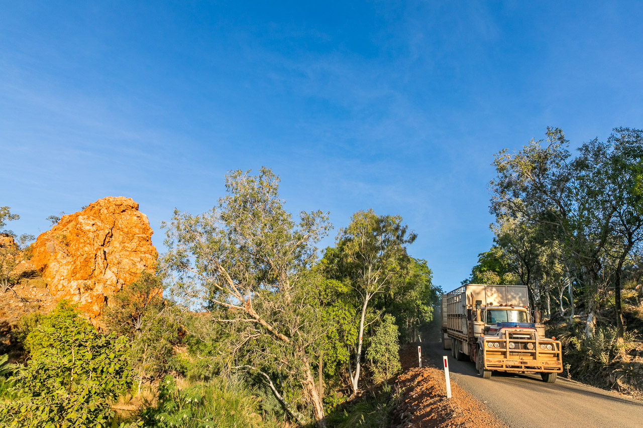 Road train passing Palm Spring on Duncan Road, near Halls Creek in Western Australia