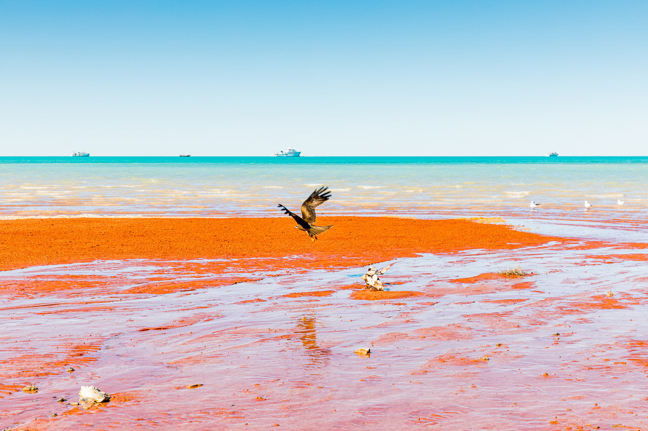 The incredible colours of Demco Beach in Broome have to be seen to be believed