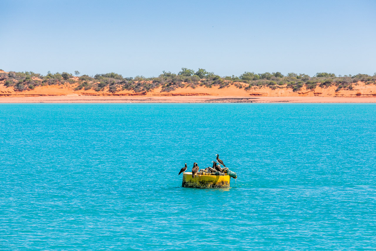 The colours of Broome have to be seen to be believed
