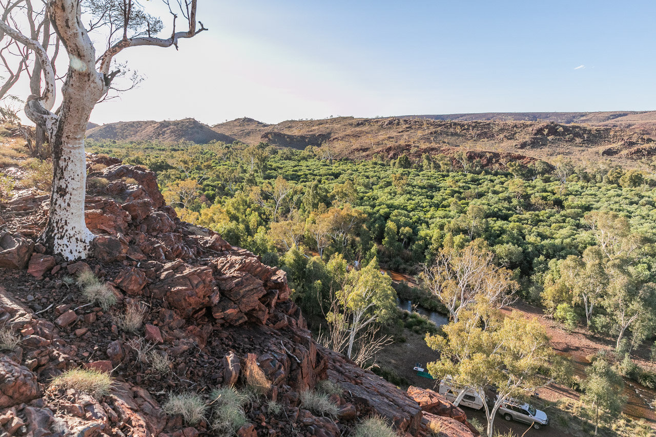 View across trees from a rocky outcrop near Newman in the Pilbara