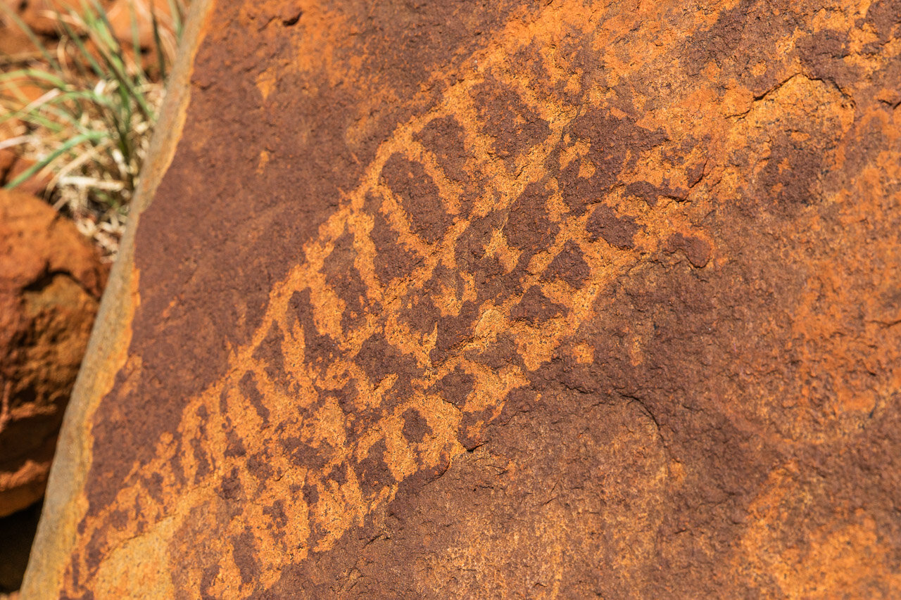 Aboriginal petroglyphs found near Newman, etched into the red rocks