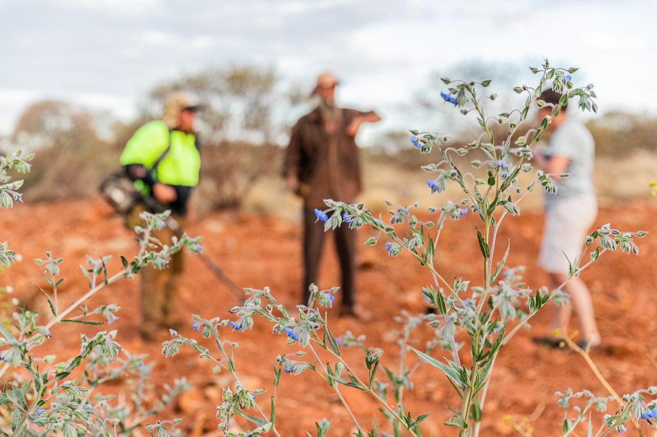 Gold-prospectors-Pilbara-09.jpg