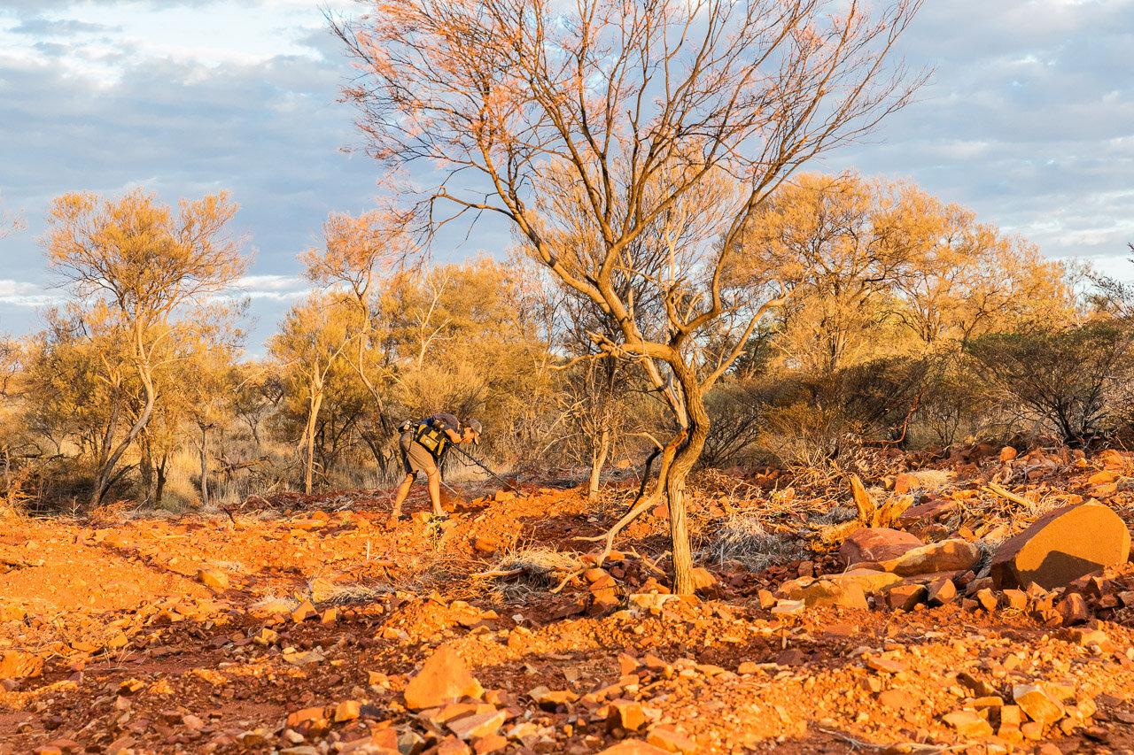 Gold-prospectors-Pilbara-15.jpg