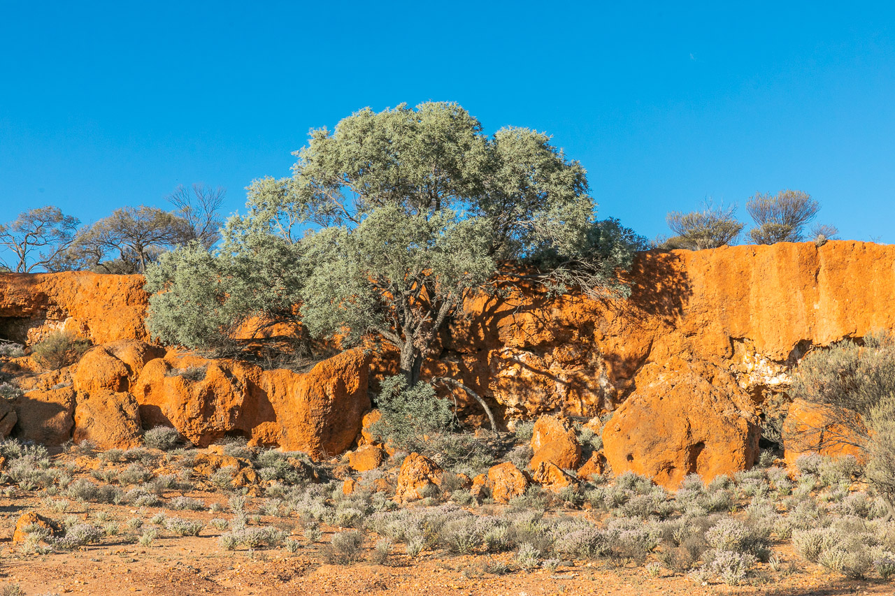 The breakaways through the Goldfields glow in the late afternoon sun