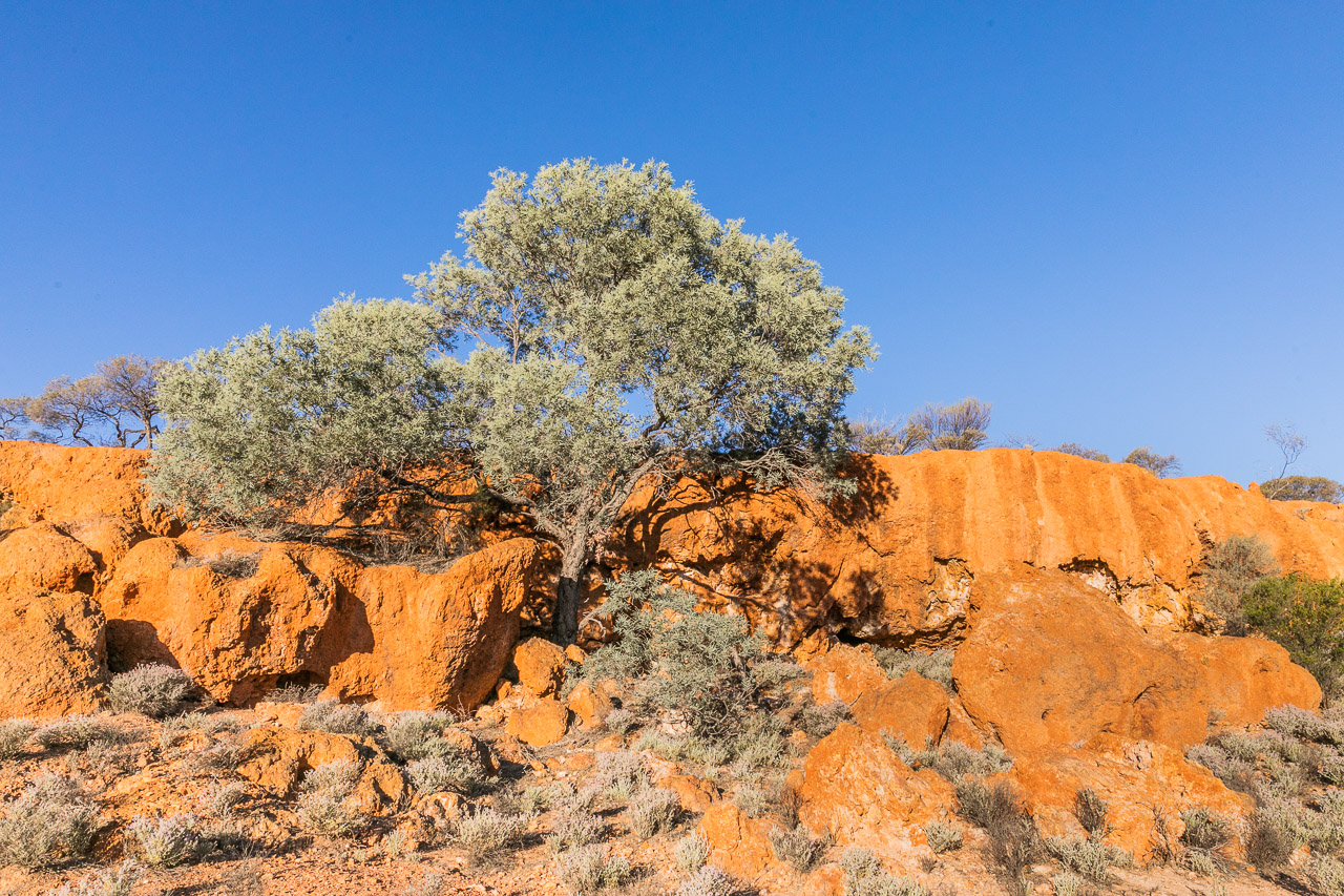 The colours of the Goldfields