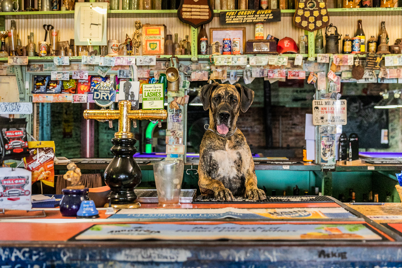 Bella the barmaid at the Broad Arrow Tavern in WA's Goldfields