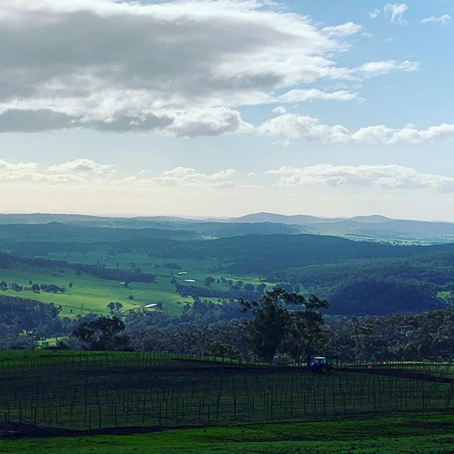 What a view our new Prosecco vines, all 7500 of them will have when they get planted shortly 🙌 Coming to a glass near you in 2021 🥂🍾🥂 @elevation652.mtbellevue