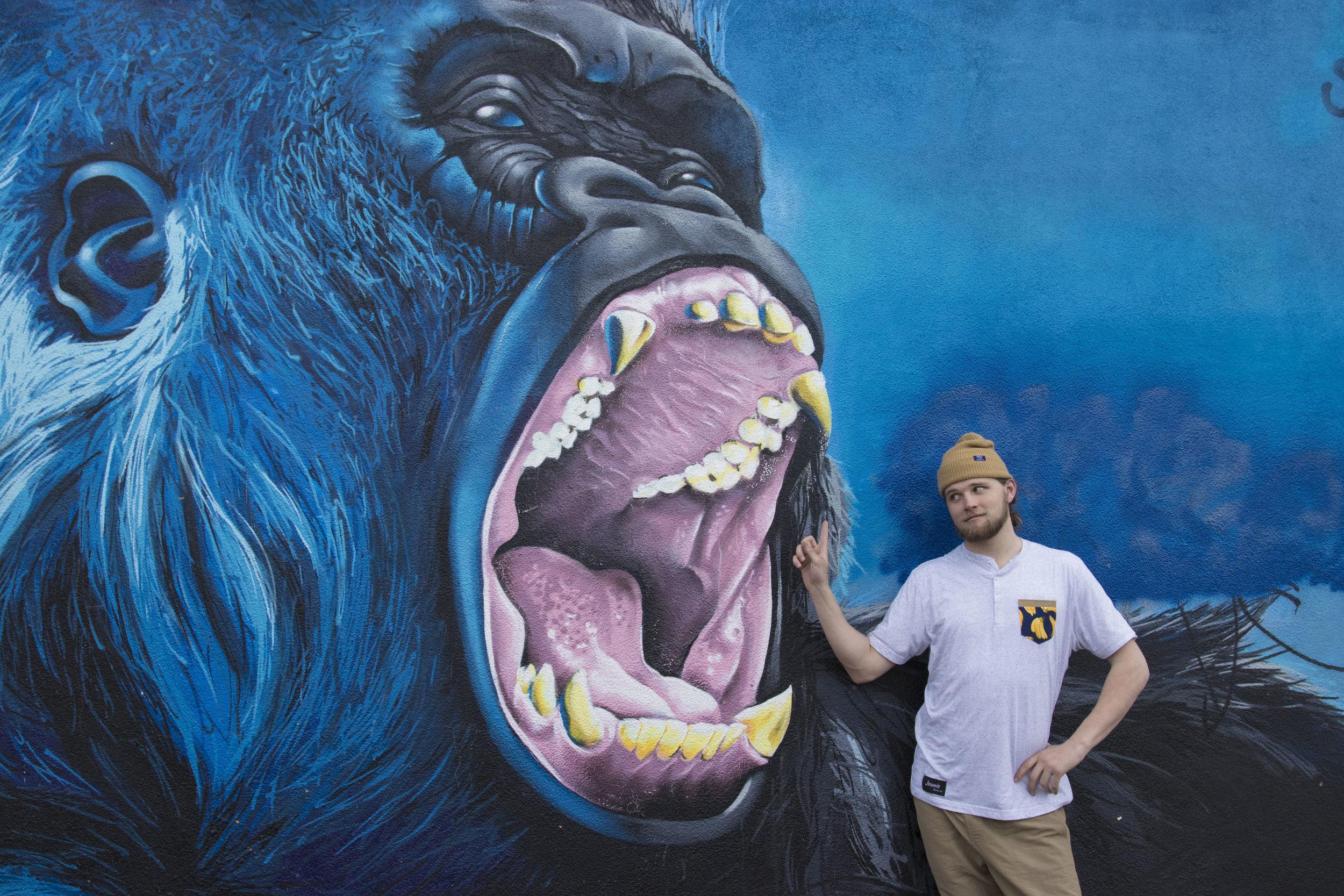 Gorilla_Cant_have_my_pocket.jpg