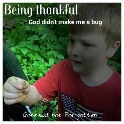 bug-funeral.jpg