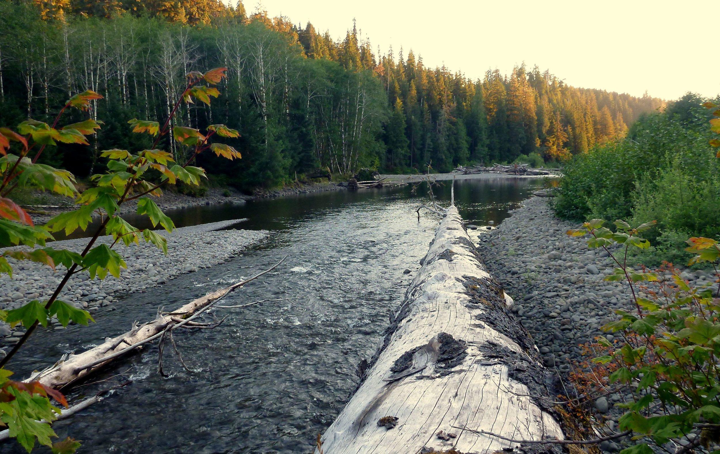 Bogacheil River.jpg