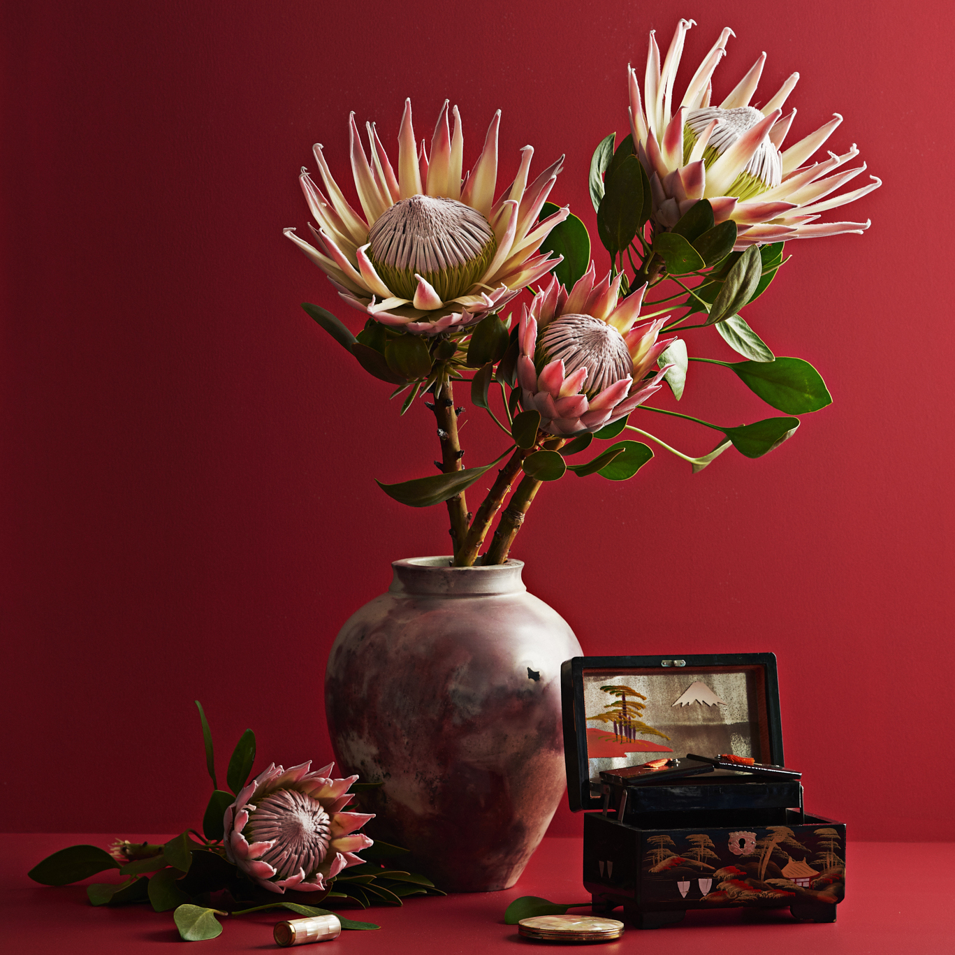 Evie Kemp for NZ Flowers Week 2018  As an ambassador for NZ Flowers Week 2018, Evie styled a series of images in collaboration with Dulux and United Flower Growers to champion and celebrate specific locally grown blooms.