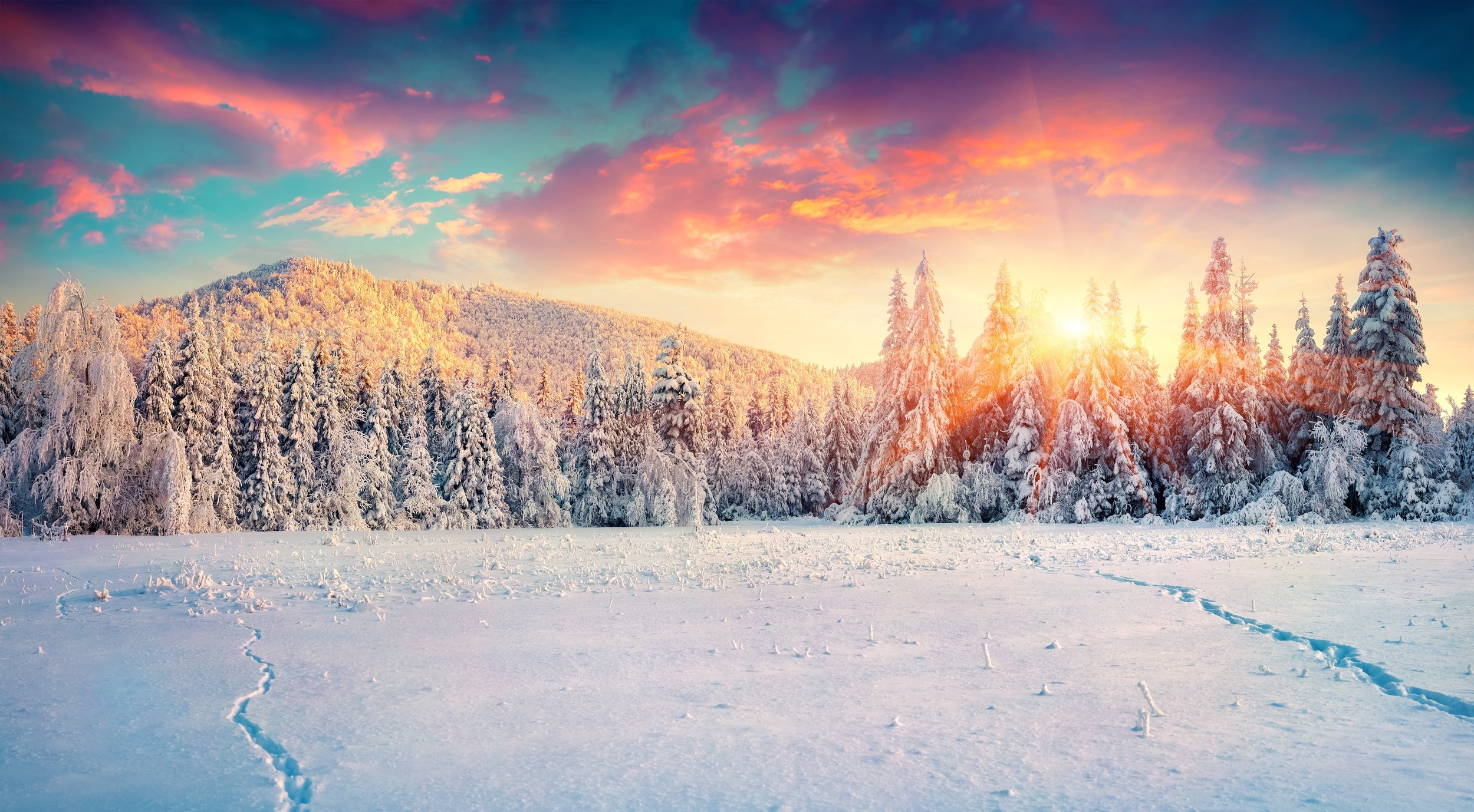 Colorful-winter-panorama-in-the-Carpathian-mountains.-497893528_8163x4500@0.5.jpeg