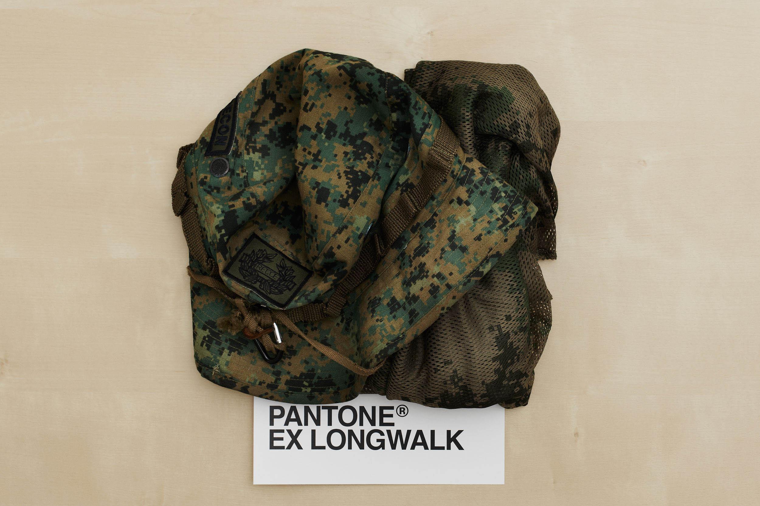 PantoneExLongwalk.jpg