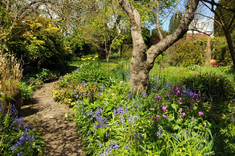 Turn+End+looking+across+the+Spring+Garden+April+2016.jpg