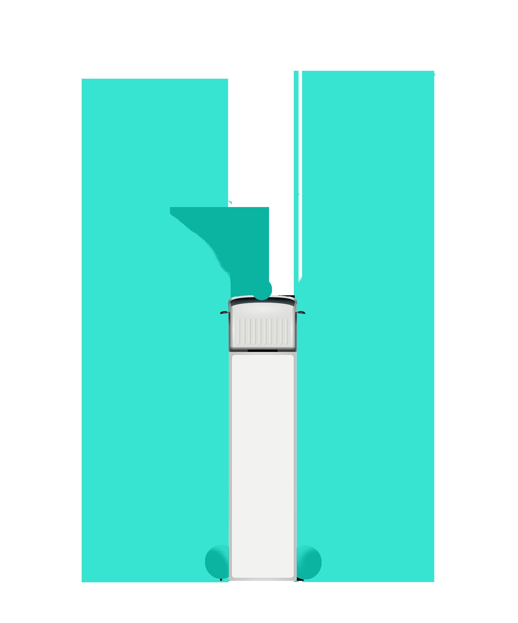 CSS4.png