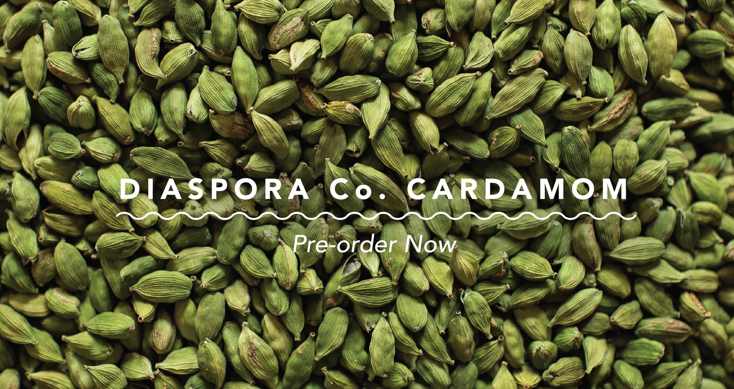 Cardamom-PreorderNow.jpg