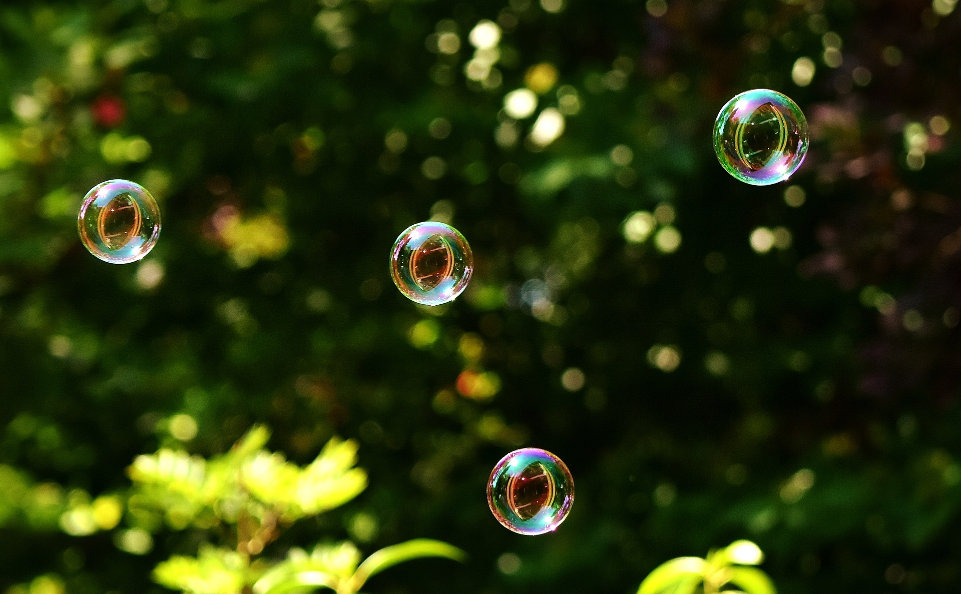 soap-bubbles-2436210_1920.jpg