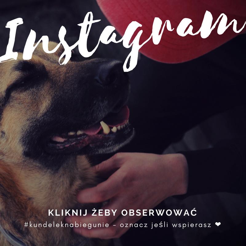 Instagram Kundelek Na Biegunie.png