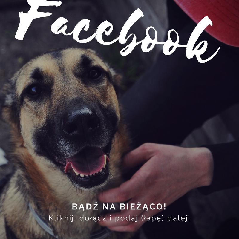 Facebook Kundelek Na Biegunie.png