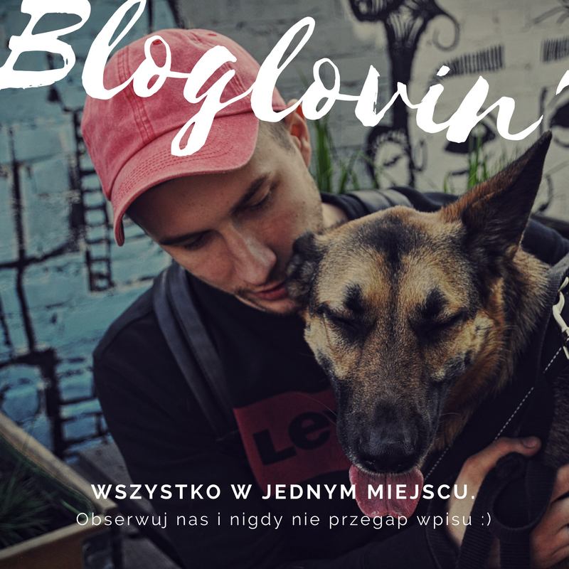 Bloglovin.png