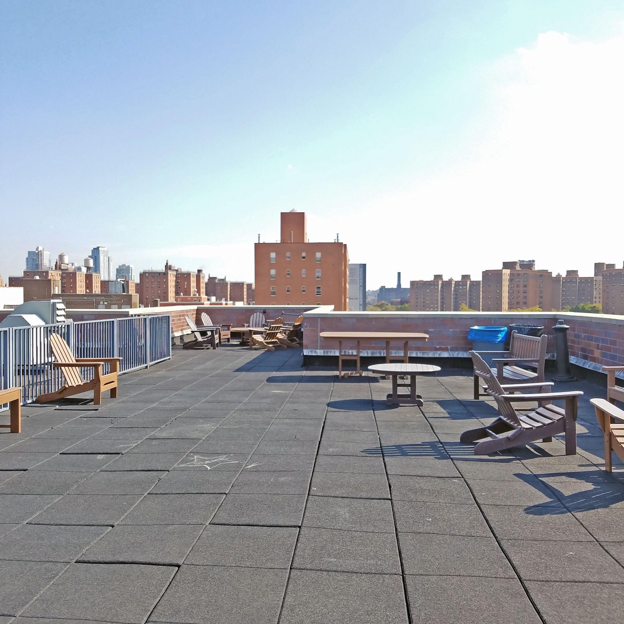 252 East 2nd Roof Top.jpg
