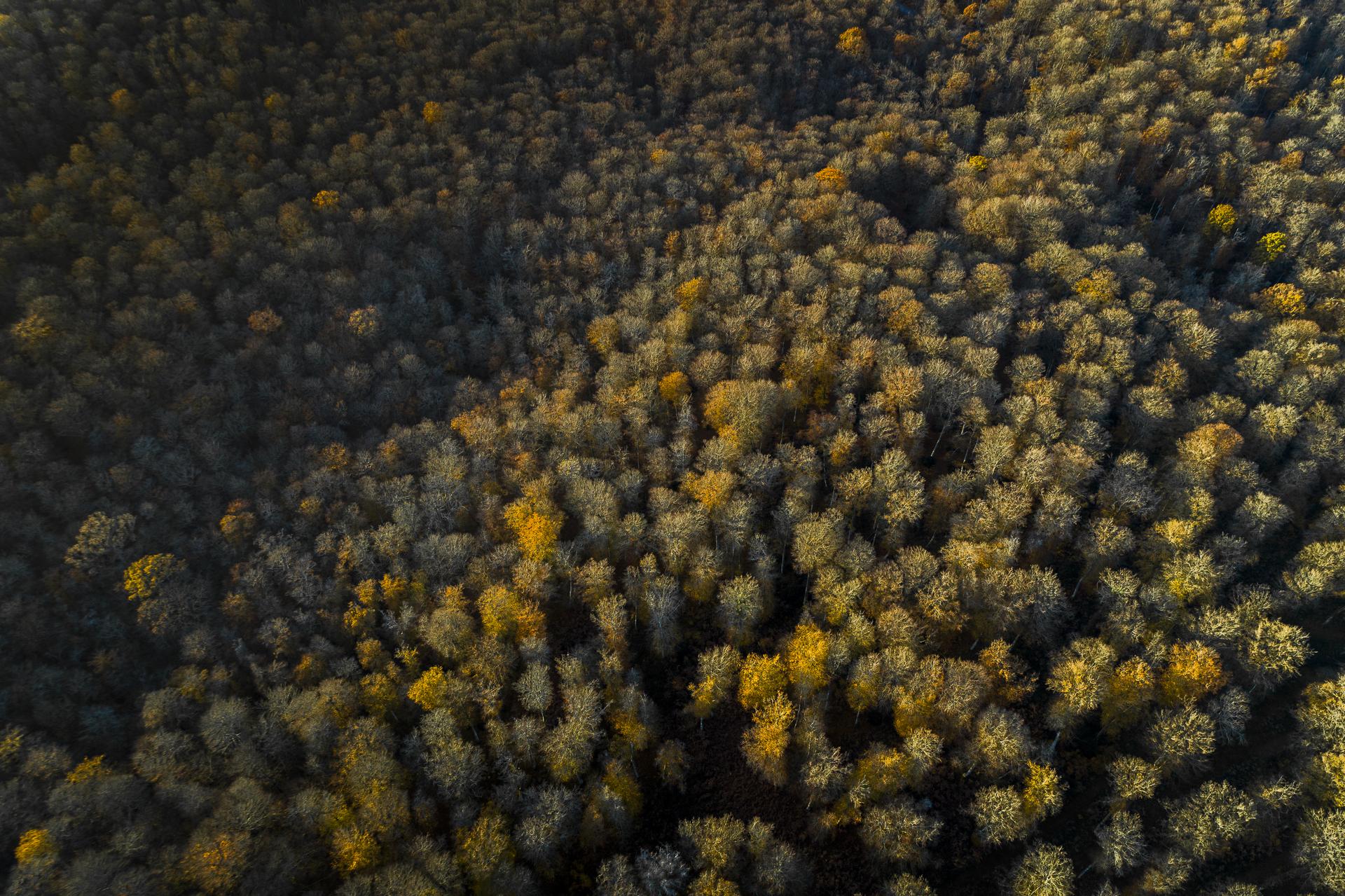 Photo aérienne par drone - normandie