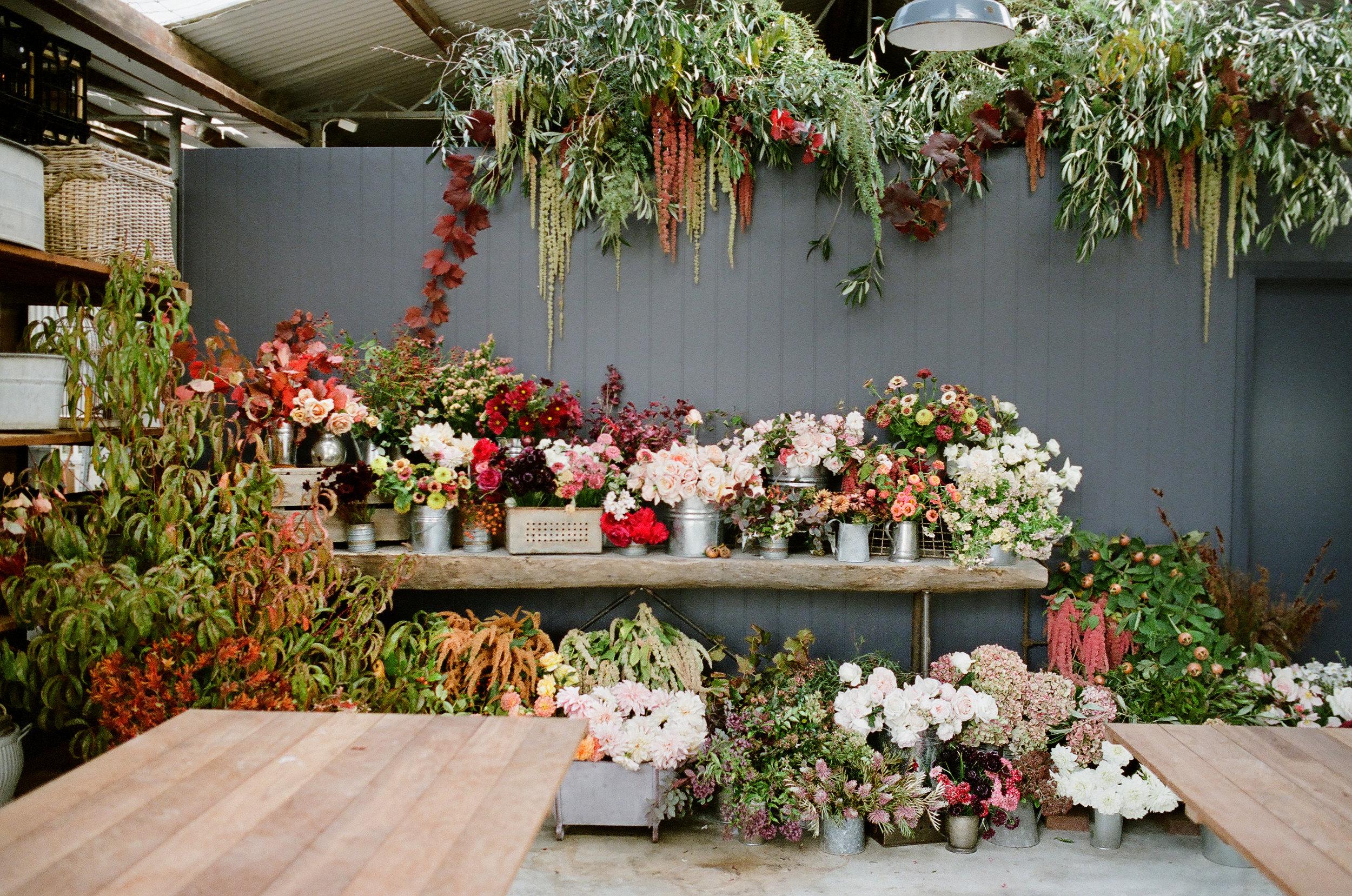 Autumn_Garden_Workshop_0014.jpg