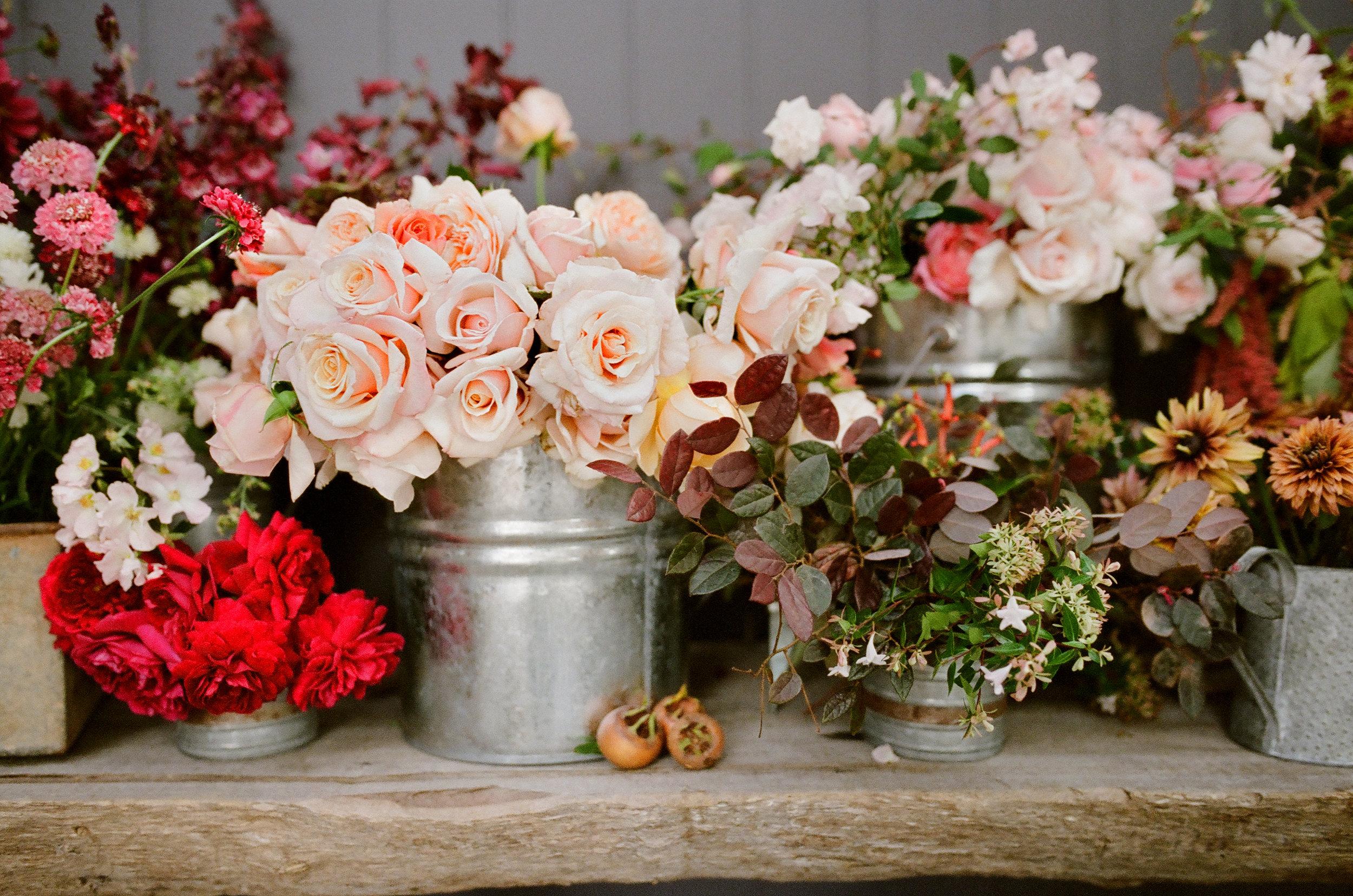 Autumn_Garden_Workshop_0016.jpg
